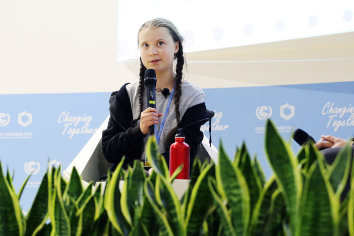 Climate conference: 'between hope and lack of real ambition'