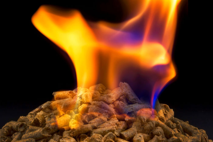 Biomass kills climate