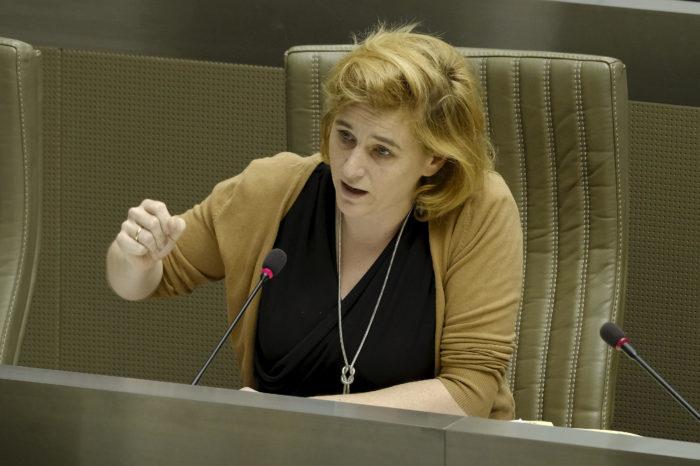 Elke Van den Brandt: '30 kph to pacify and secure Brussels'