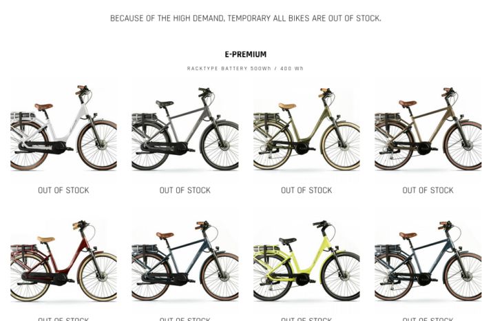 Unprecedented hunt for (rare) e-bikes since corona