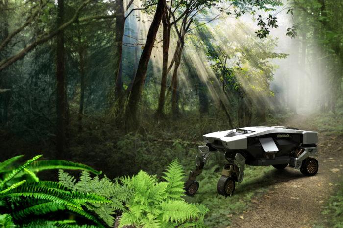 Where no car has gone before: Hyundai Tiger X1