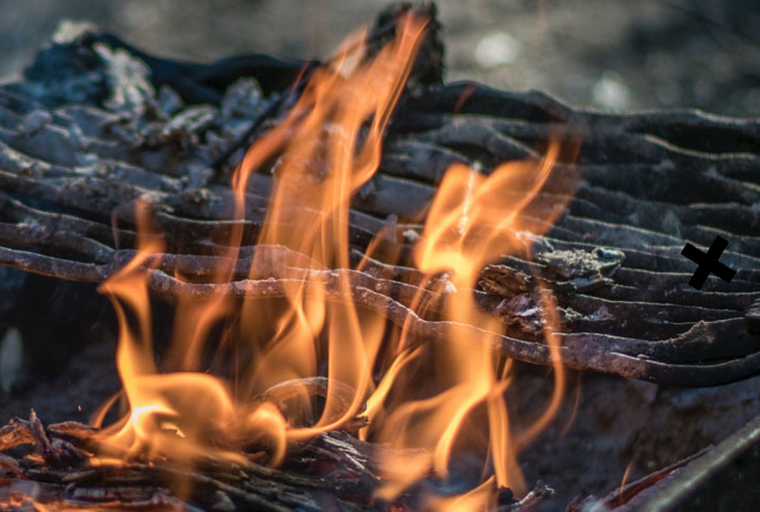 Dutch RIVM: 'wood-burning accounts for 25% of particle emissions'