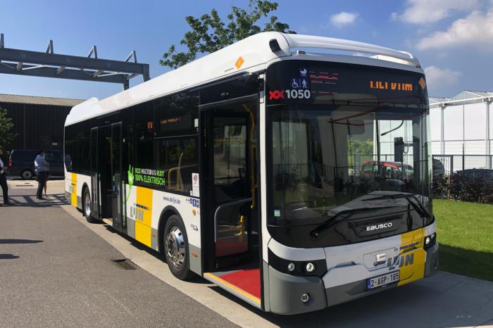 Multiobus pioneers with twelve e-buses for De Lijn