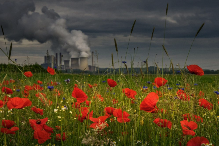 EEB: 'EU governments fail to curb emissions from toxic plants'